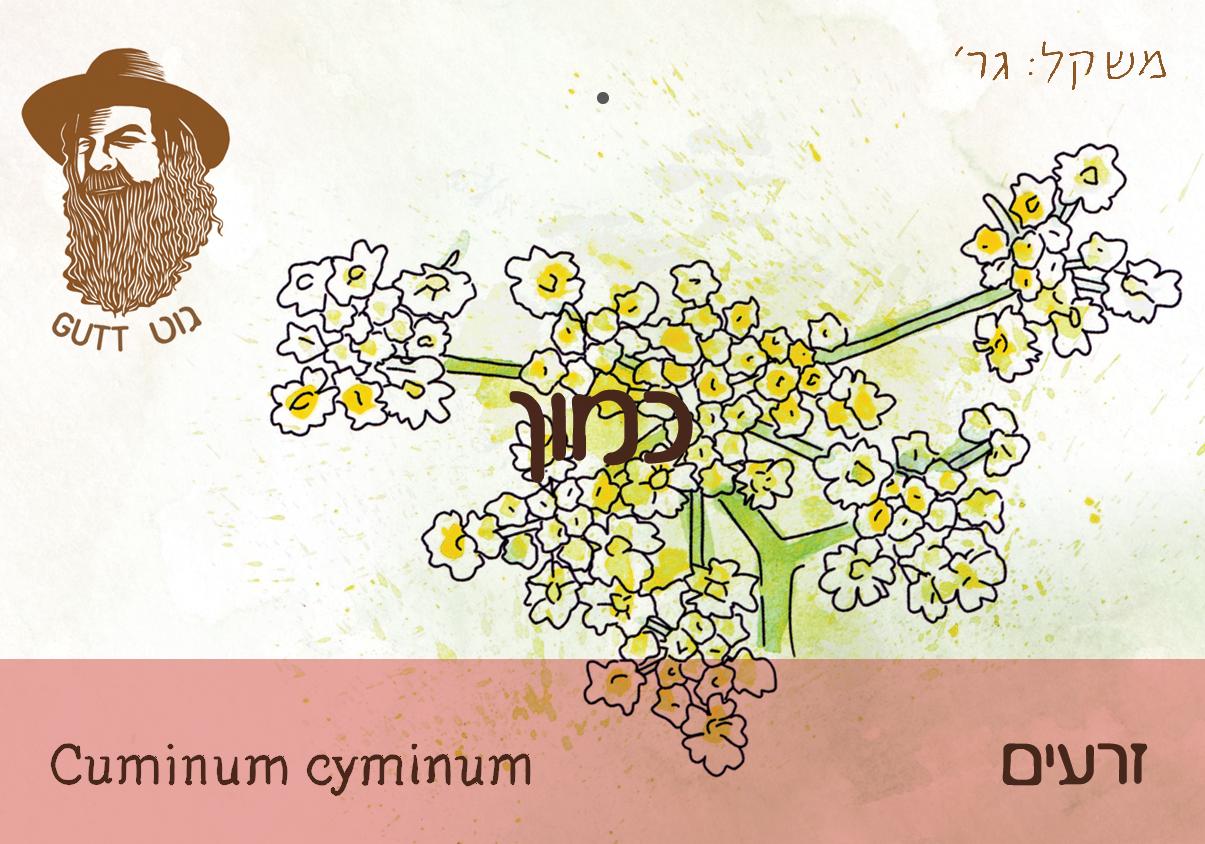 כמון זרעים - אורגני תורכיה - 50ג