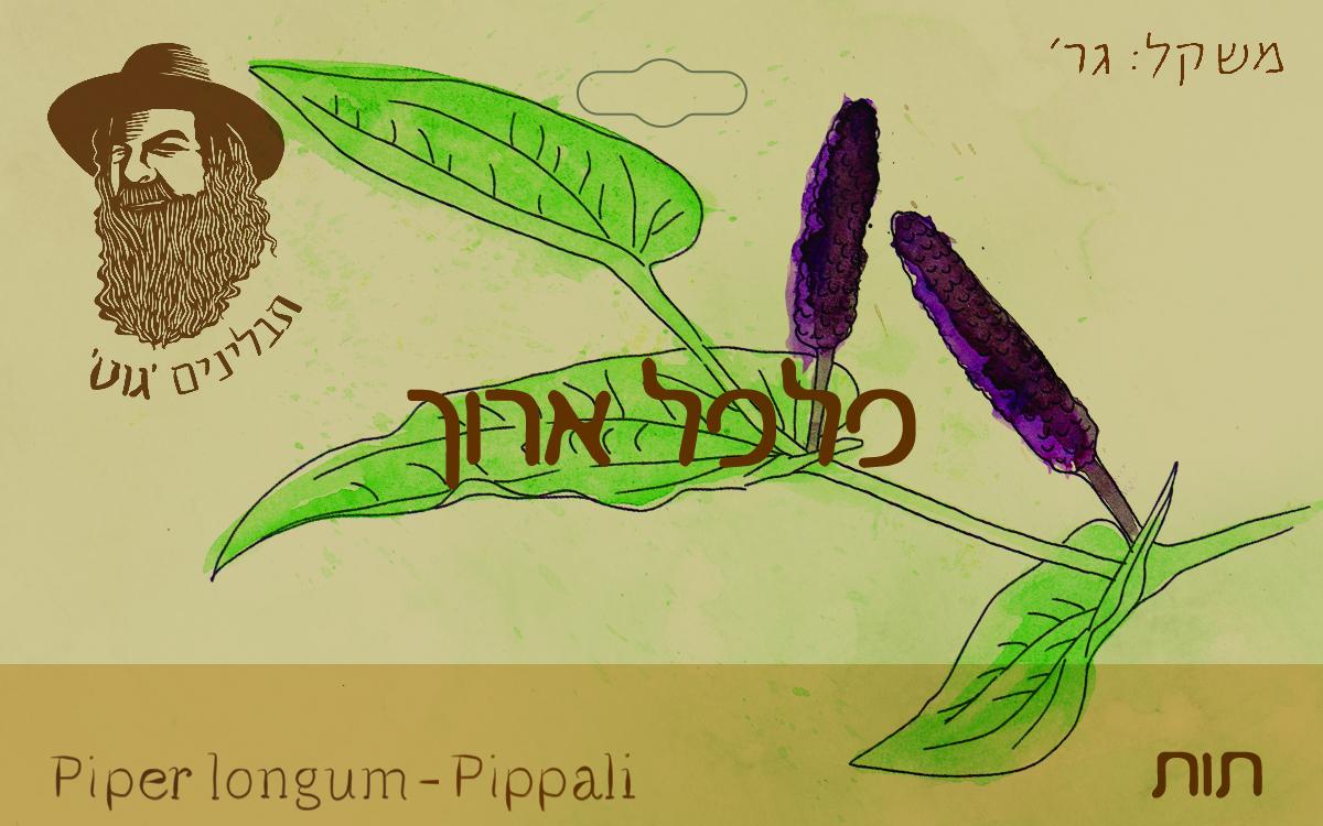 פלפל ארוך 20גר - אורגני - אינדוניזיה